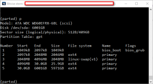 Partition table of new GPT disk